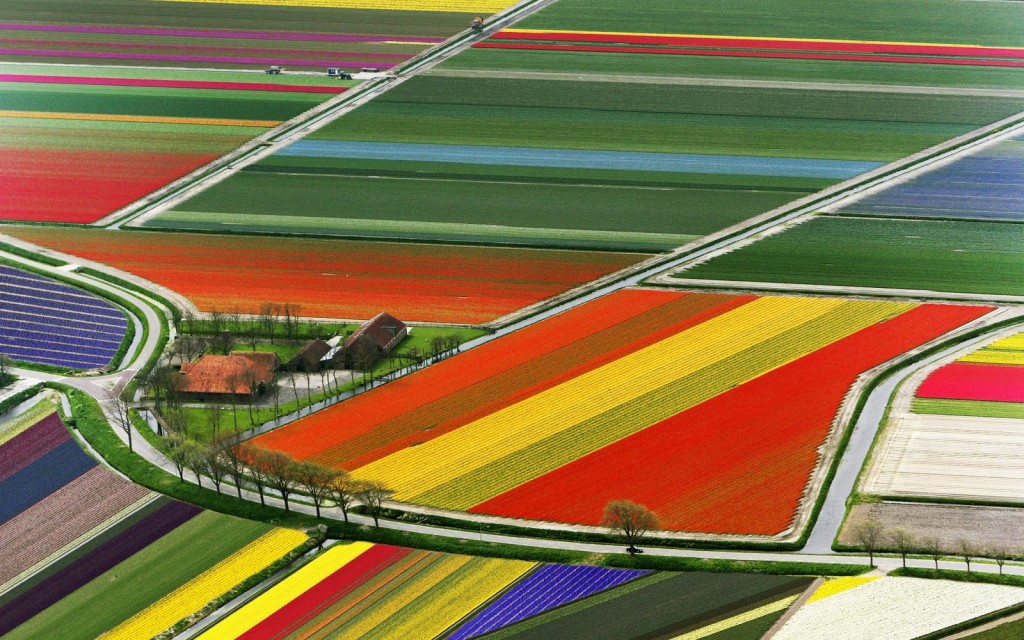 Holland-Tulips - Breathtaking Places