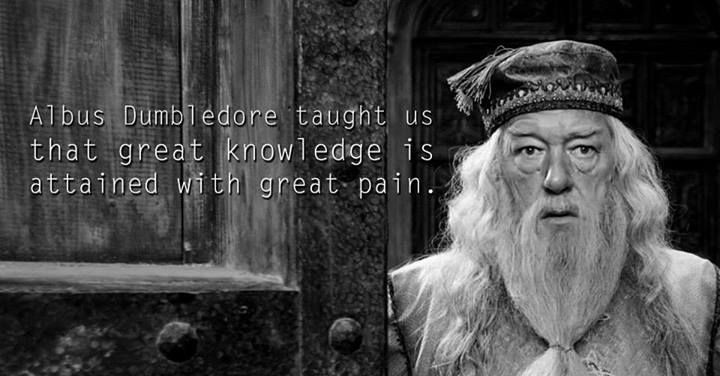 Lessons from Harry Potter Albus Dumbledore