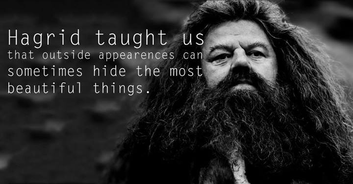 Lessons from Harry Potter Hagrid