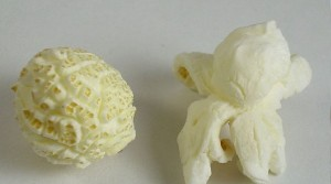 Popcorns types Mushroom and Snowflake