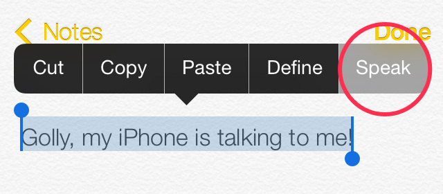 Speak selection hidden features of iPhone