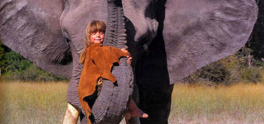 Tippi-Growing-Up-Alongside-Wild-Animals 2