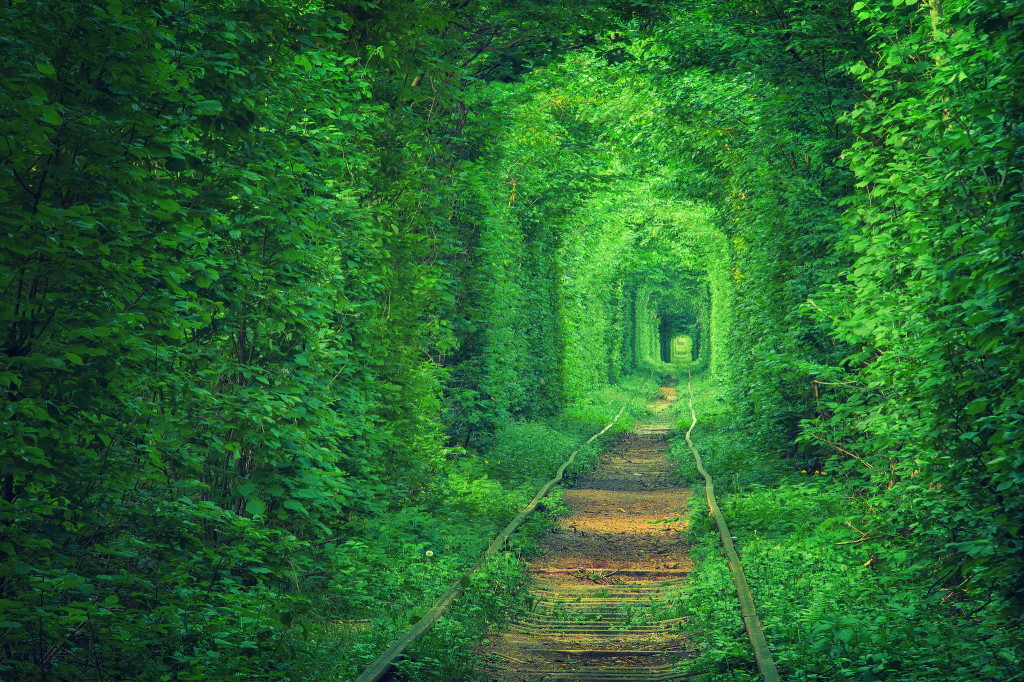Tunnel of love in Ukrain
