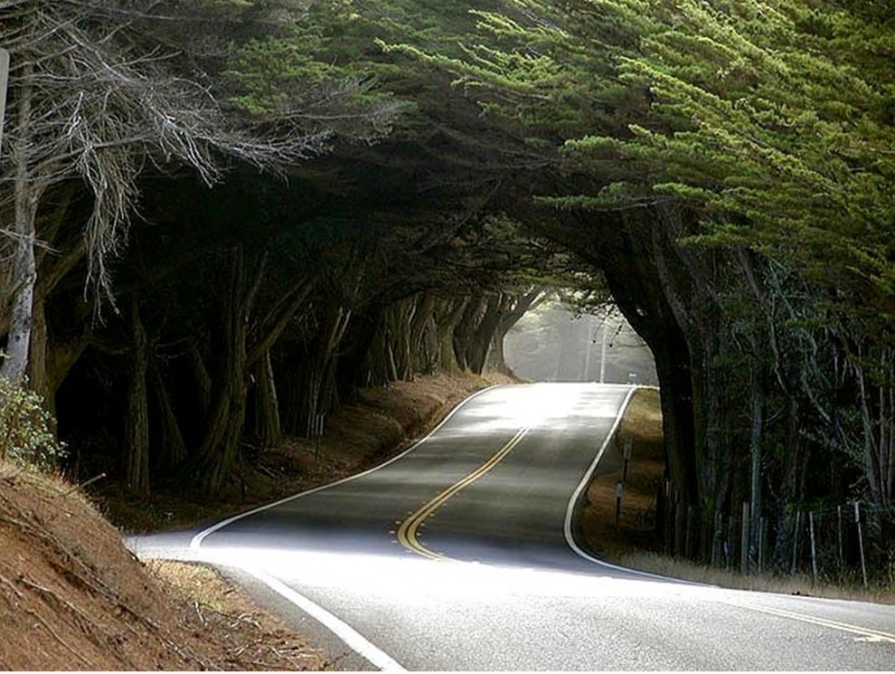 Mendocino County located in California, US