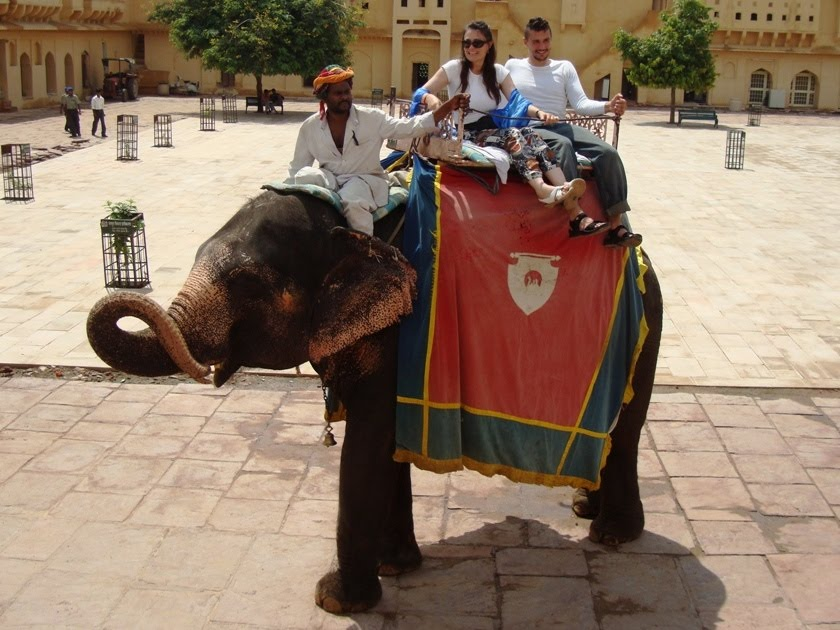 Most Romantic cities in the world - Elephant Ride, jaipur, india