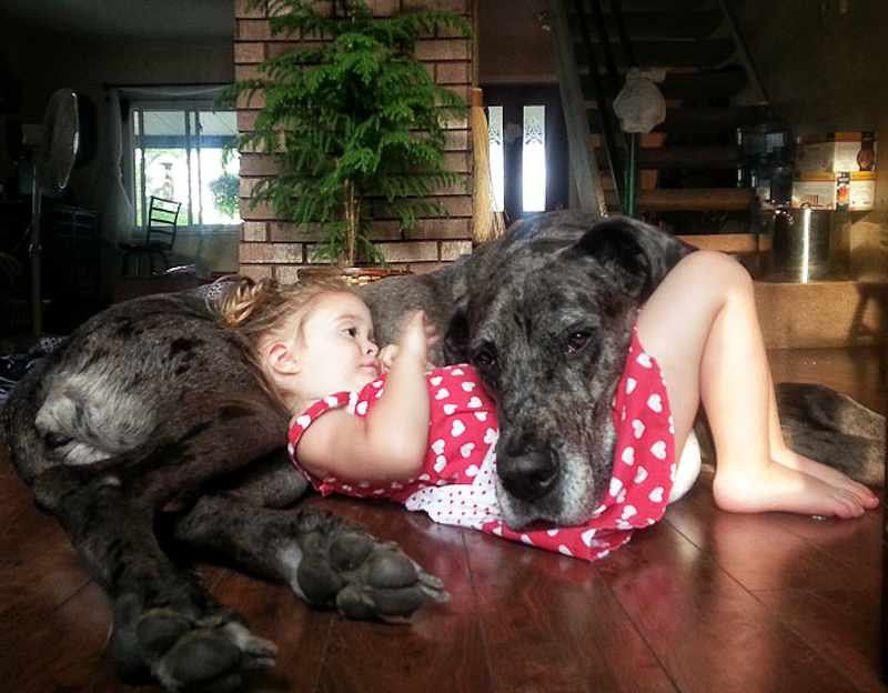 Small Kids With Big Dogs