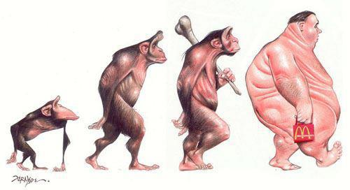Evolution of a obese man