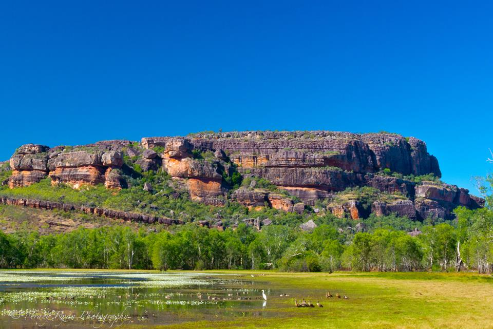 See Kakadu National Park in the Northern Territory