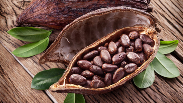 Foods for immunity in Winter - Cocoa