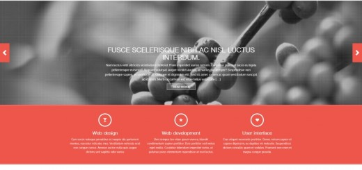 revera, revera wordpress theme