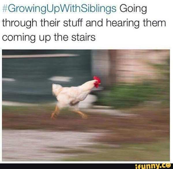 Growing up with siblings, funny twitter images, funny tweets