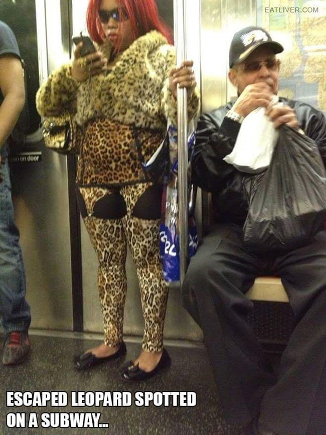Funny pictures, crazy things, funny things people did, public transport, public transport fun