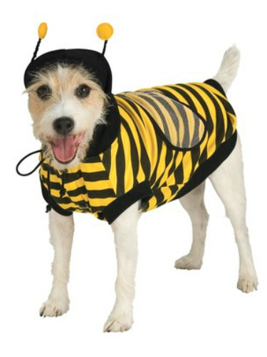 cute dog costumes, animal costumes, costumes for dogs