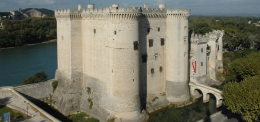 unusual museums you should visit - Tarascon Castle (France)