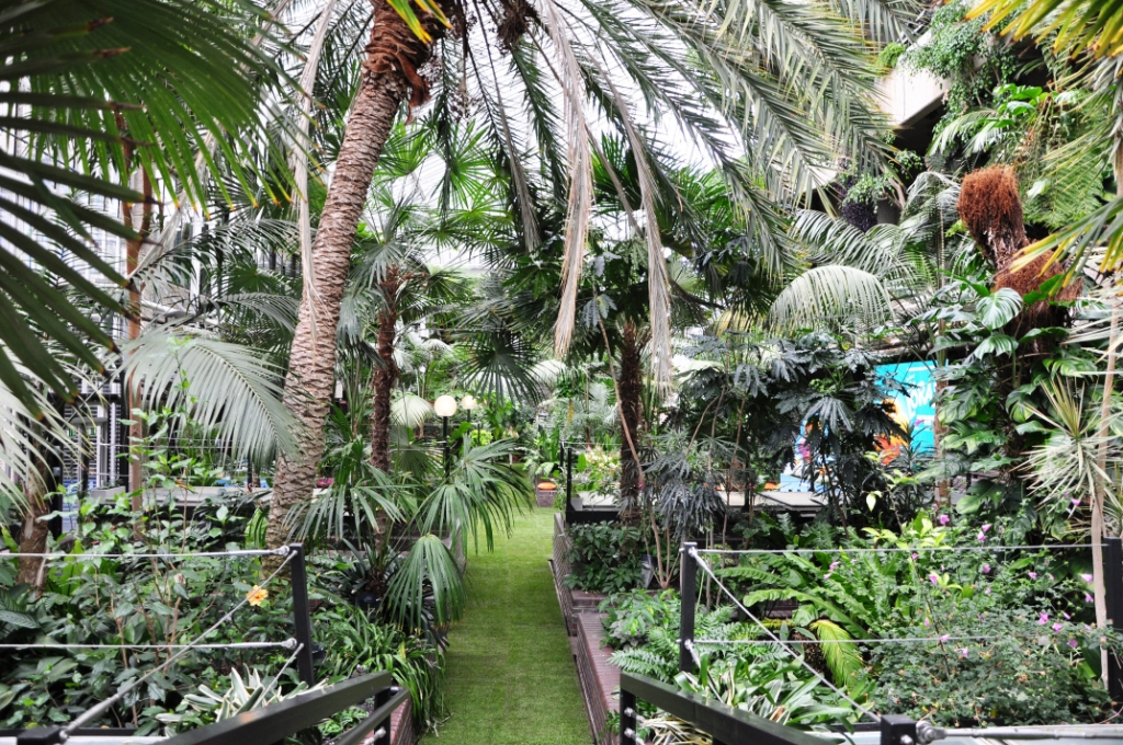 tropical garden in Barbican