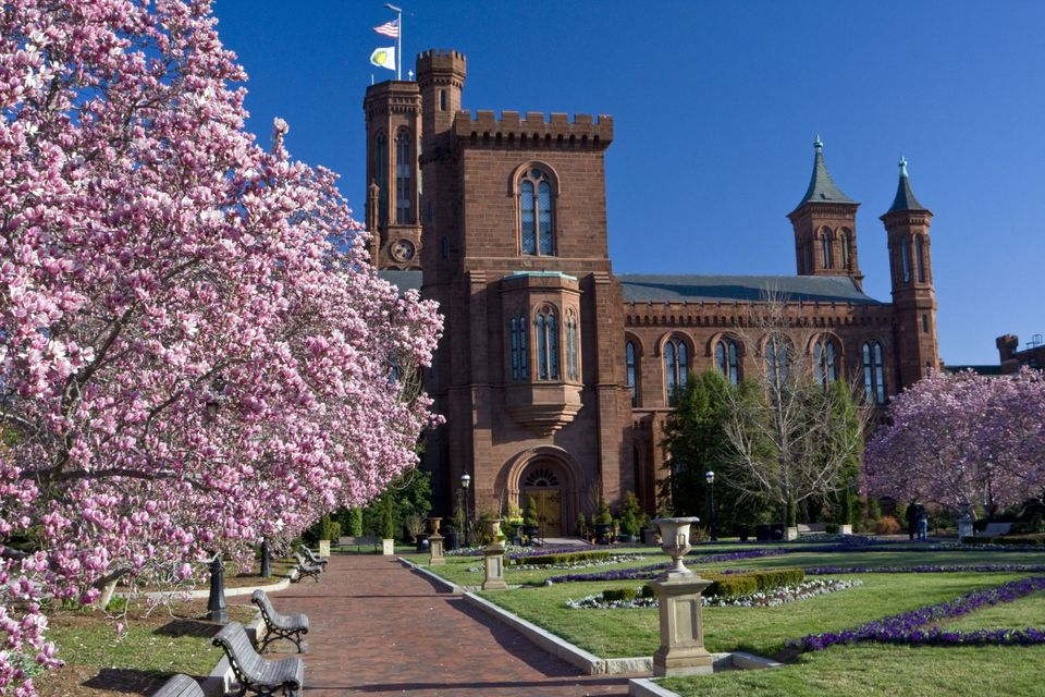 Best museums in world - Smithsonian Institution, (Washington D.C, United States)