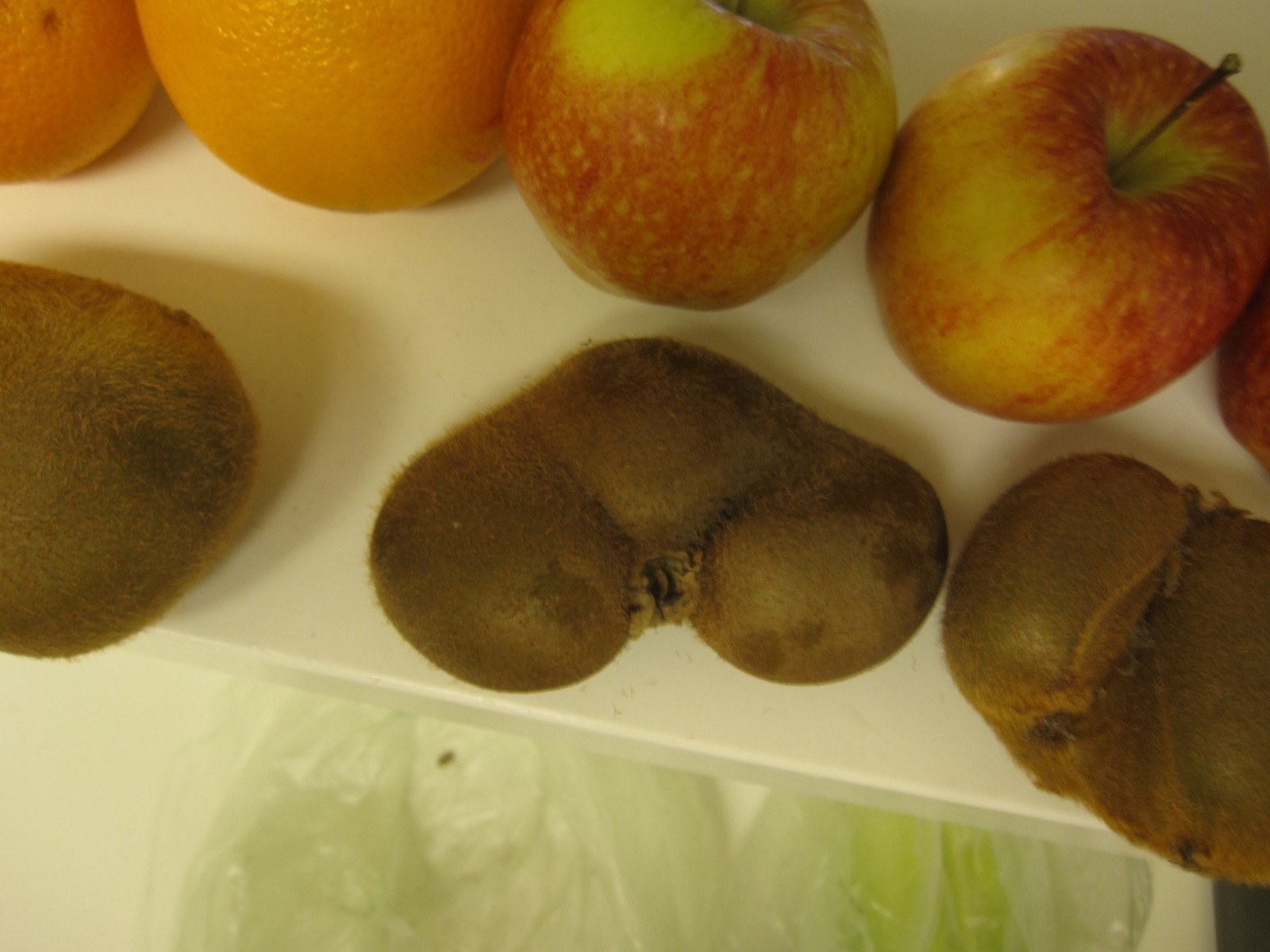 Funny fruits - Kiwi triplets