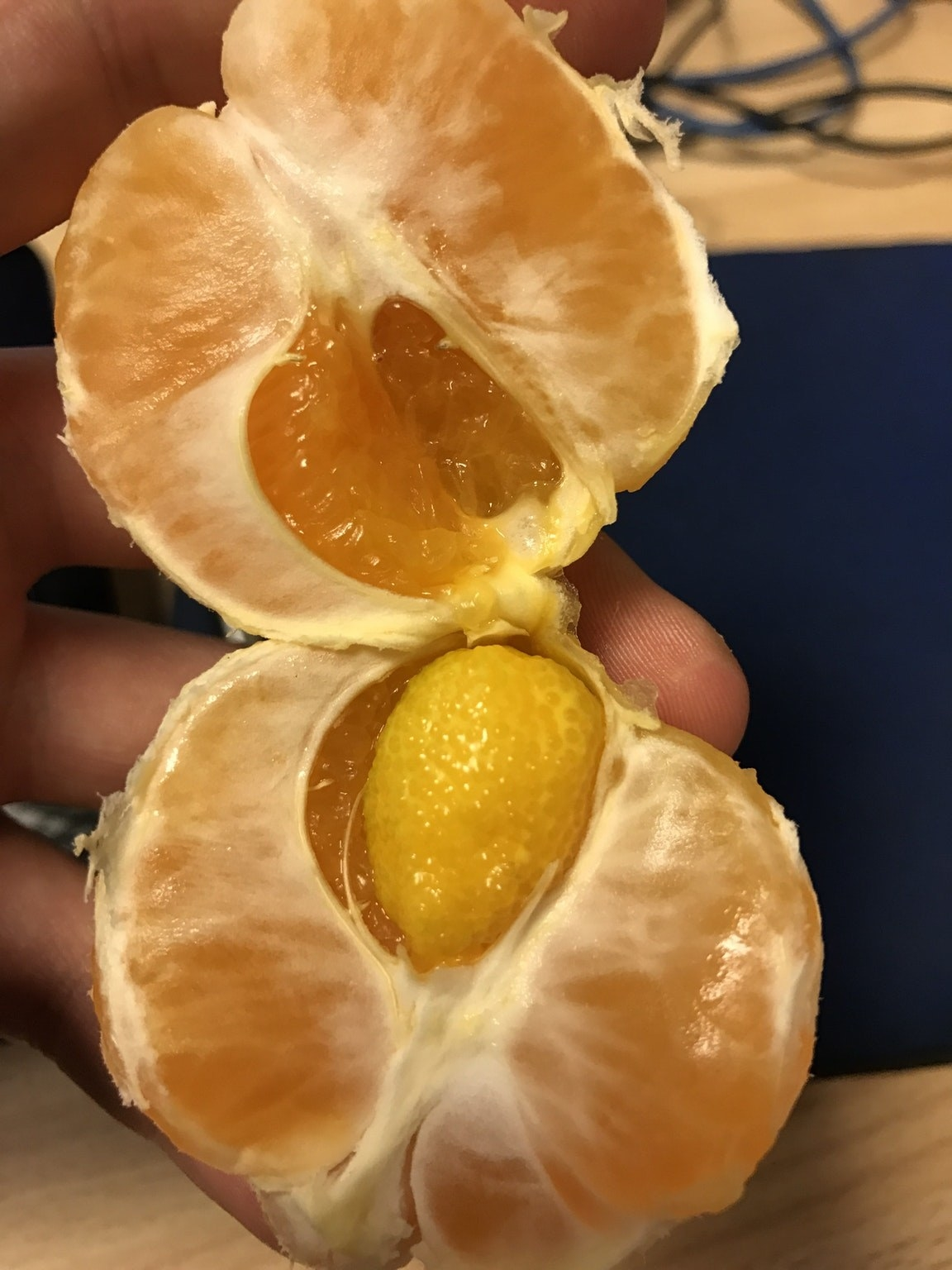 Funny fruits - Orange within Orange