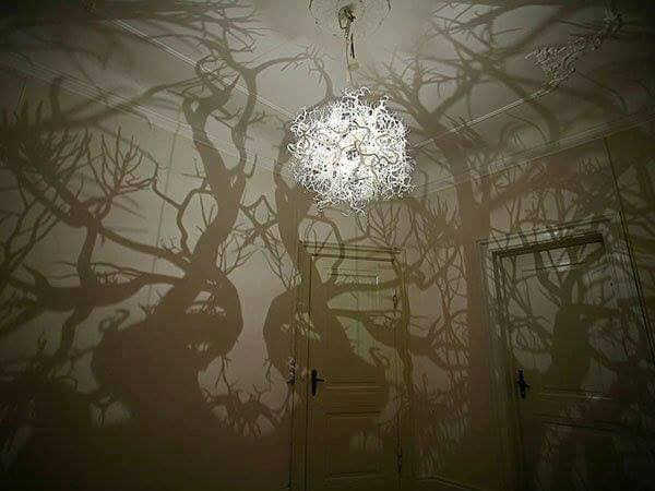Amazing Shadows Art